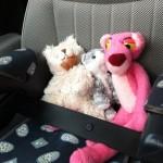les doudous en voiture